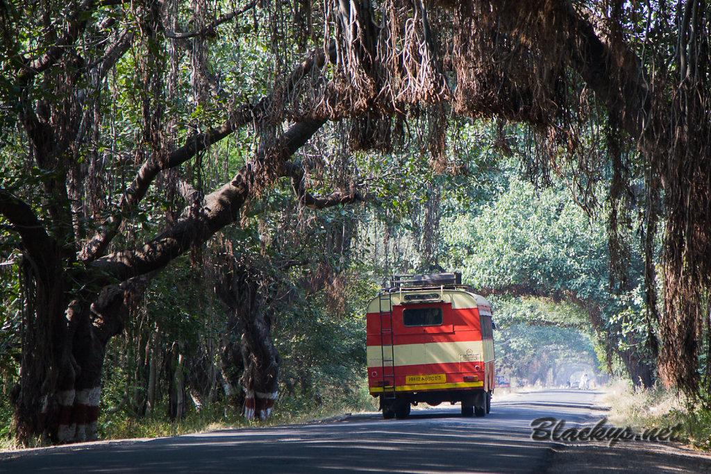 indischer Linienbus